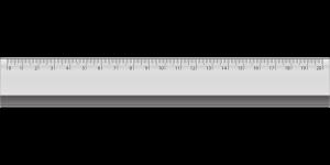 Průměrná délka ztopořeného penisu je 12 - 19 cm